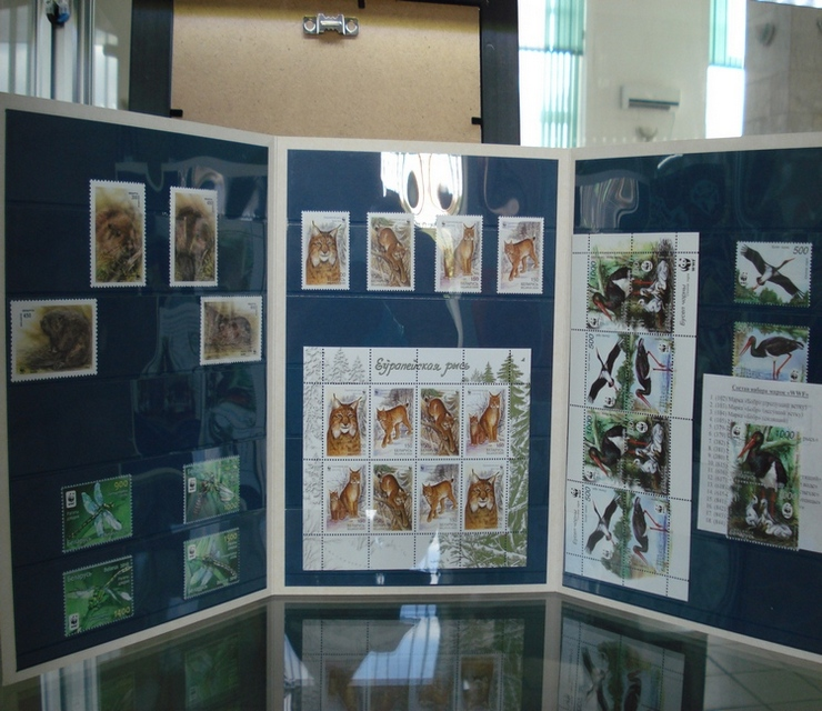 """Набор марок Беларуси """"WWF"""" (Всемирный фонд дикой природы)"""