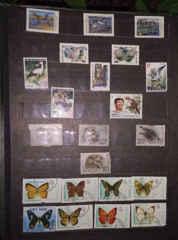 Помогите оценить марки